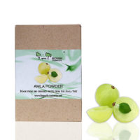 biopark-amla-powder